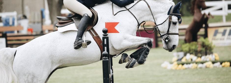 Horse jumping at Blenheim Horse Trials