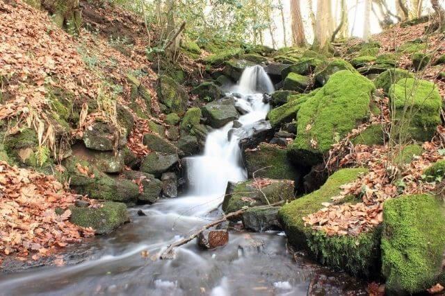 Cleddon Falls cascading through the valley