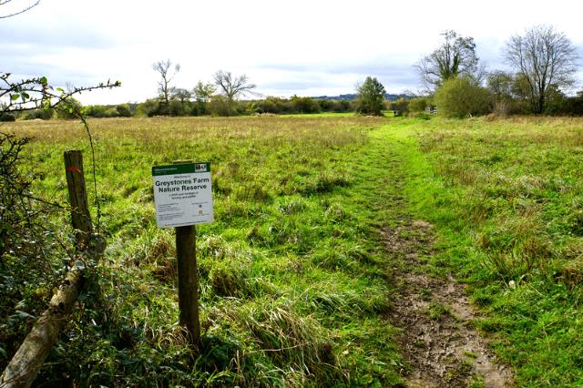 Greystones Farm